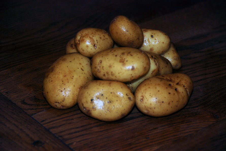 Climate change on one allotment: potatoes from the garden