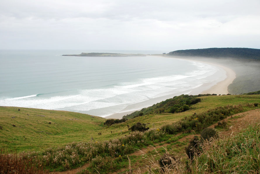 Tautuku Bay and Peninsula warmed by the Southland sub-tropical ocean current but liable to catch the brunt of storms developing to the south or south-west of the South Island and favoured by big wave