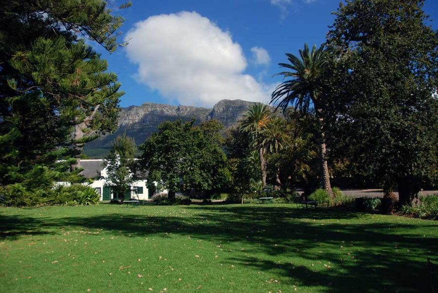 Picnic green at Buitenverwachting in Constantia