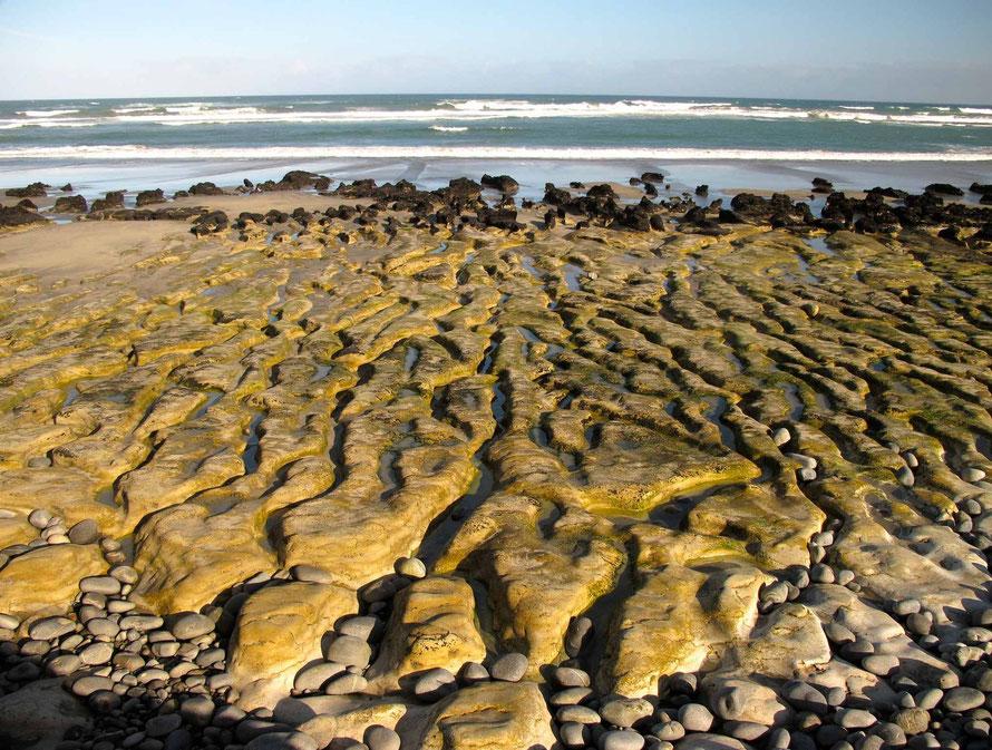 Sea-formed karren at Paturau Beach (http://nzfrenzysouth.files.wordpress.com/2013/