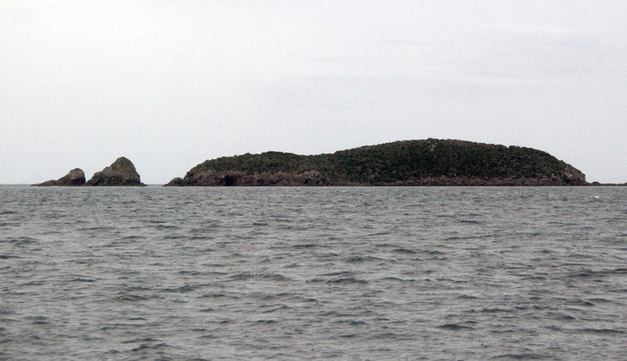 Motonui/Edwards Island in the Foveaux Strait.