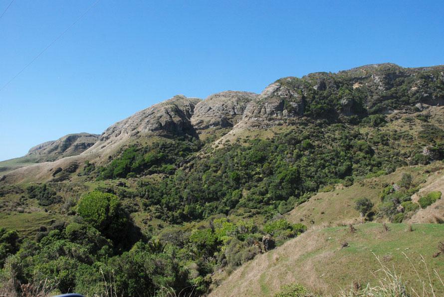 Remnant bush and sheep paddocks below bluffs of limestone on the road to Antanori.