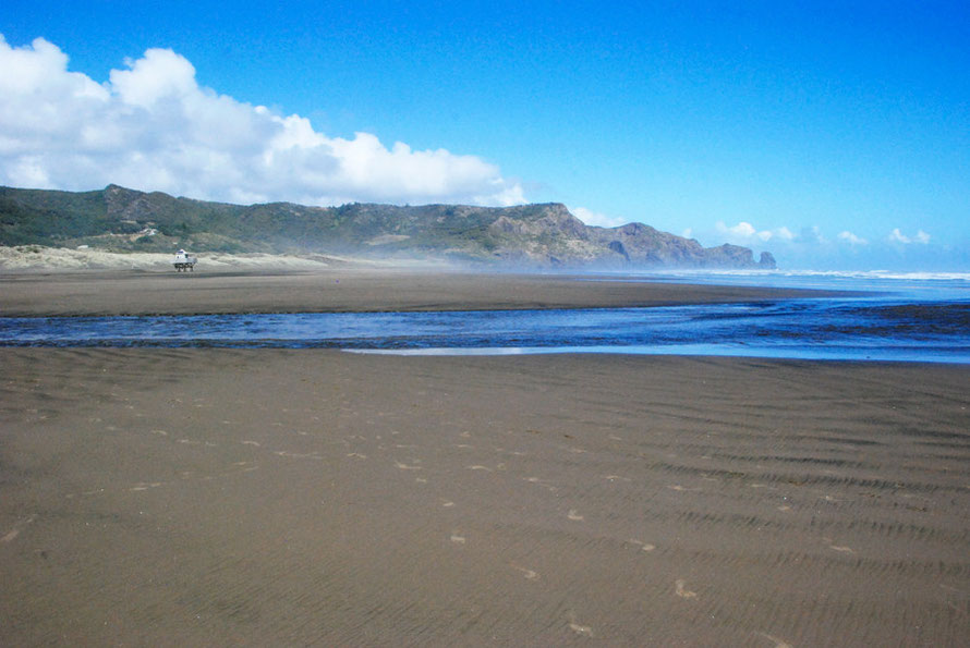 Te Henga (Bethells Beach), 30 km north west of Auckland.