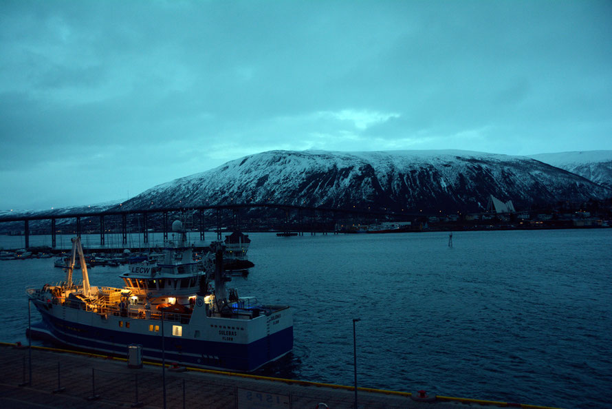 Tromsø is Norway's largest fishing port.