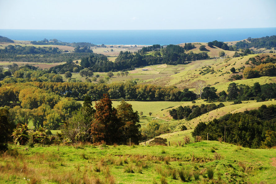 The view from he Wellsford-Pakiri road looking down to Pakiri Beach.