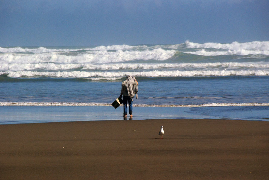 The Auckland West Coast Beaches: surf on a calm day battering Bethell's Beach.