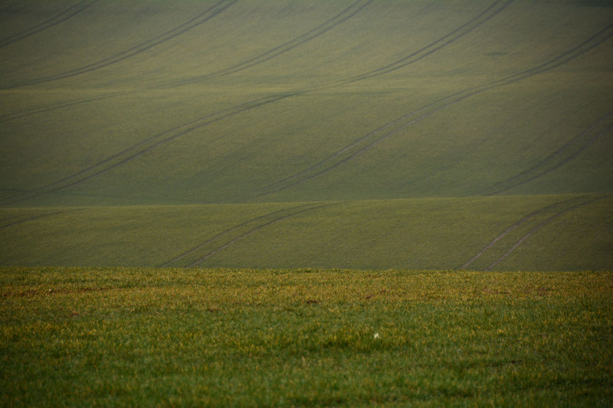 Downland Curves