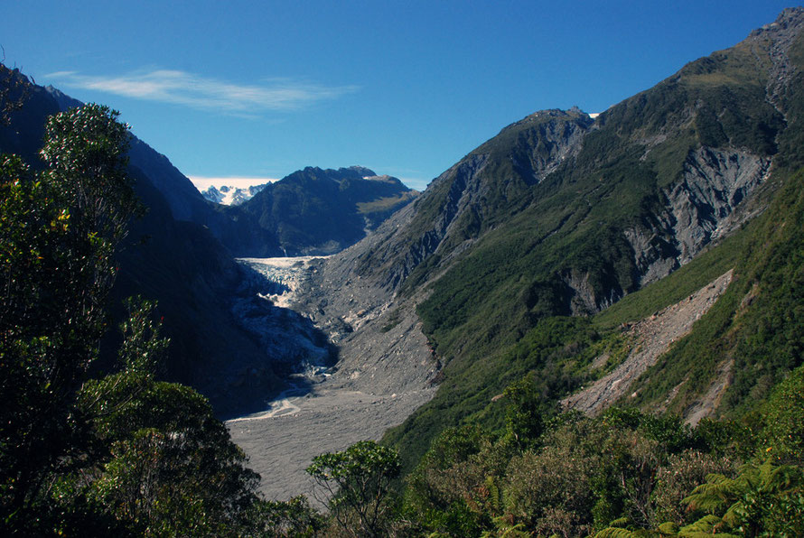 Temperate rain forest on the edges of the Fox Glacier valley. Slips, landslides and erosion expose new rock that in turn breaks down into soil and renews nutrients. Note the forest line of previous gl