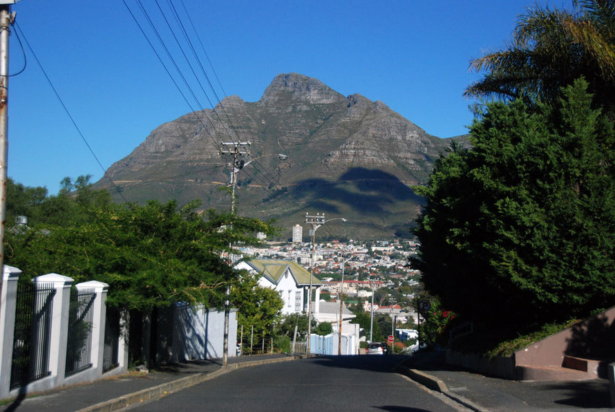Looking toward Gardens and the Devil's Peak from Tamboerskloof