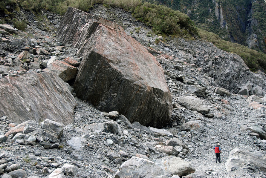 A giant block of schist carved out by the Fox Glacier and deposited high on the valley wall