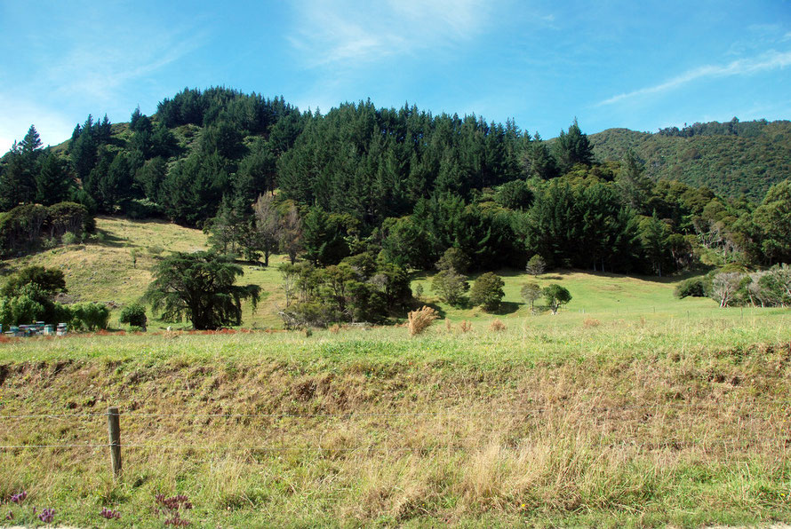 God's own. The recreation ofa British Arcadia in a foreign land: near Wainui Falls, east of Pohara in Golden Bay