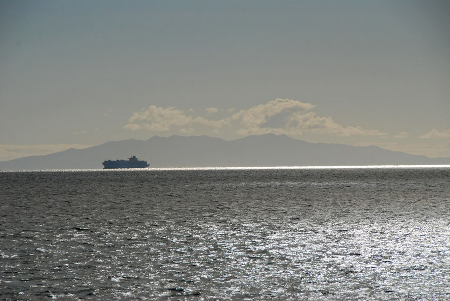 The Lexa Maersk silhouetted against the Coromandel Peninsula at it heads to the open sea.