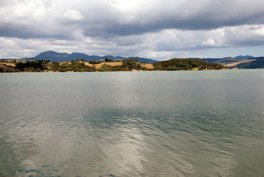 The placid waters of Coromandel Harbour from Long Bay Road.