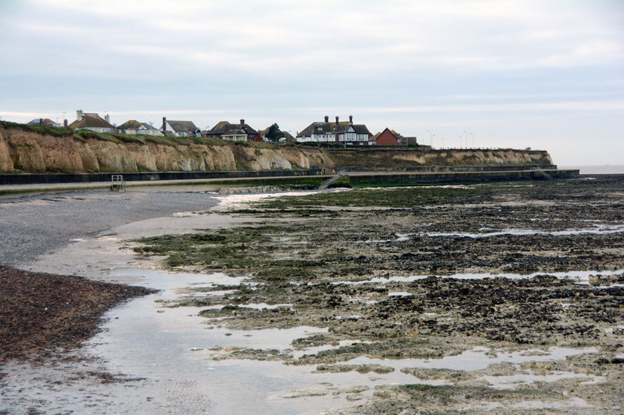 The blip: the foreshore and wave cut chalk platform at Birchington.