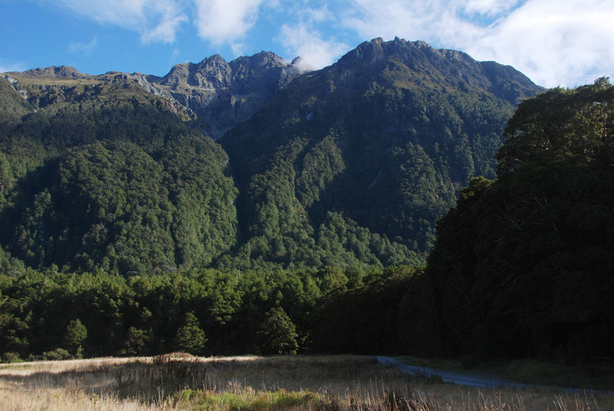 The gravel track into Cascade Creek camping area with Melita Pk above, Milford Road.