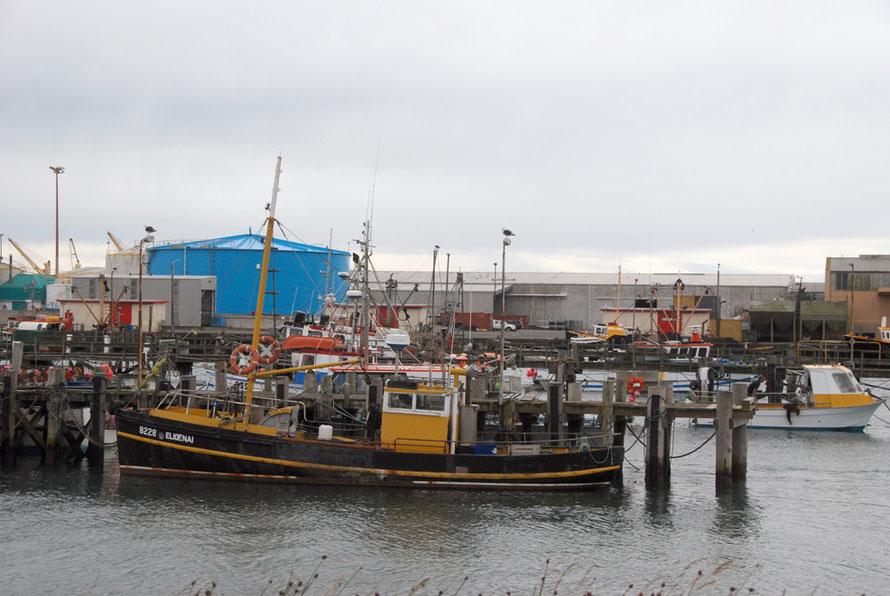 Elioenai tied up at Bluff harbour.