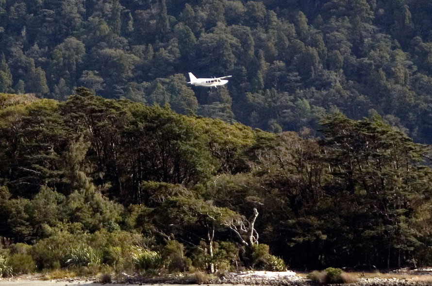 Milford Sound airstrip: 8,500 flights a year and counting.