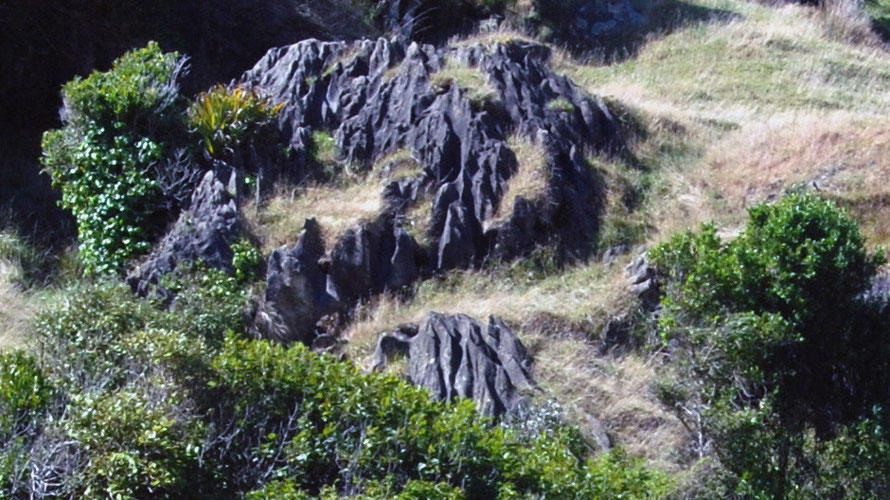 (Detail) Rinnenkarren (runnels) are visible on the partly unmantled limestone