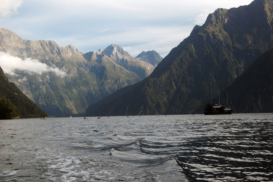 It is hard to grasp the immense scale of Milford Sound (note the kayaks and our boat, the Milford Explorer). From L to R Sheerdown, Odyssey, Mt Ada and Mt Phillips.