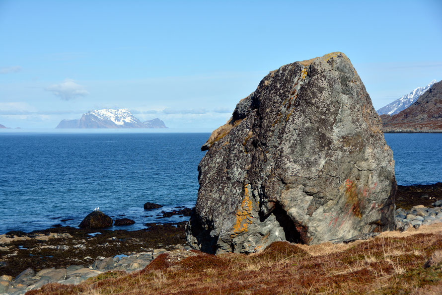 Large Gabbro erratic near Russelv on the Lyngen Peninsula with the spectacular glaciated island of Nord-Fugloya in the background.