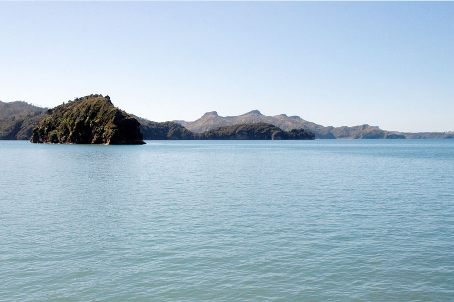 High tide in the Whanganui Inlet - a rare combination of relatively undisturbed lush native forest and tidal inlets