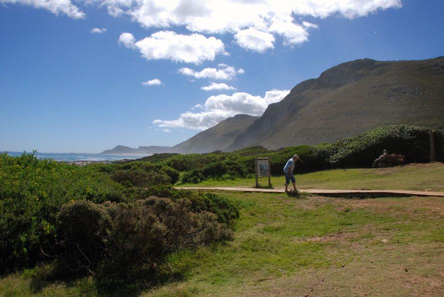 The brilliant, sparkling light of the Cape Peninsula at Scarborough