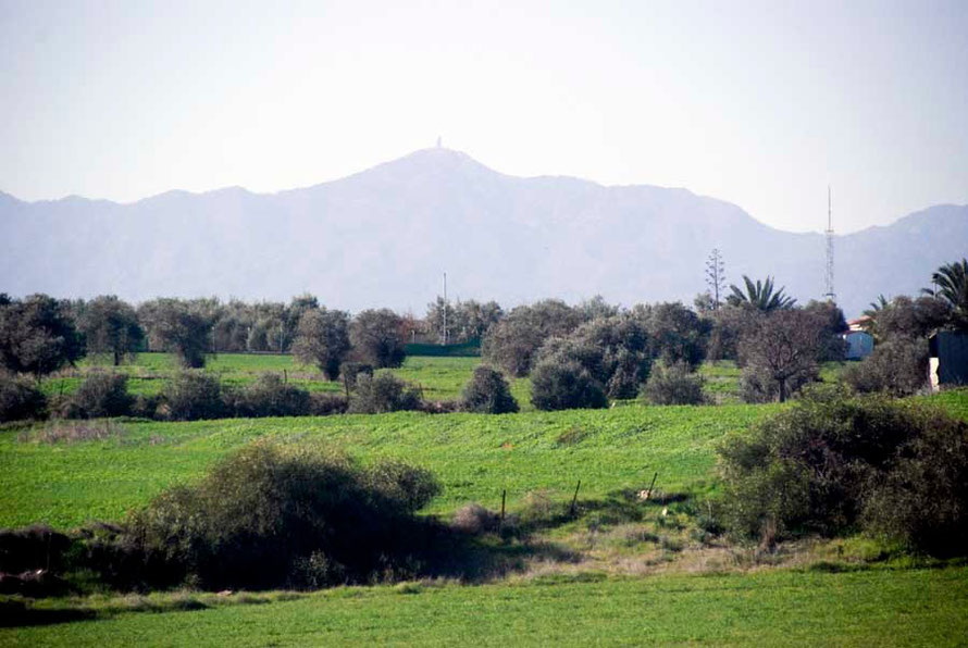 From the Nicosia to Larnaca road: Wheatfields, olives and Mount Kionia