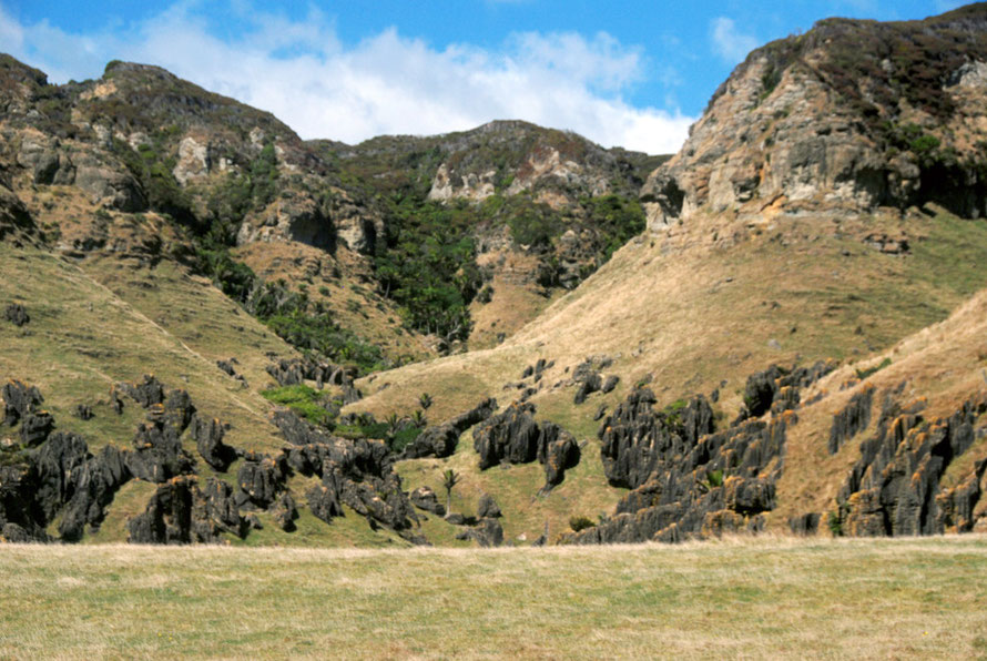 The spectacular karst country of the Cowin Road: a mustone cap with revealed karst features of the topmost beds of Takaka limestone which are the hardest and purest.