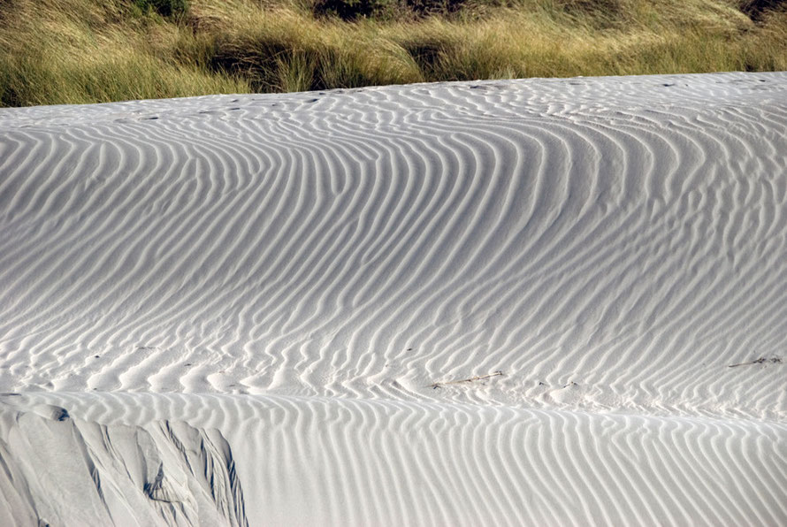 Patterns in the sand dunes at Wharariki Beach.