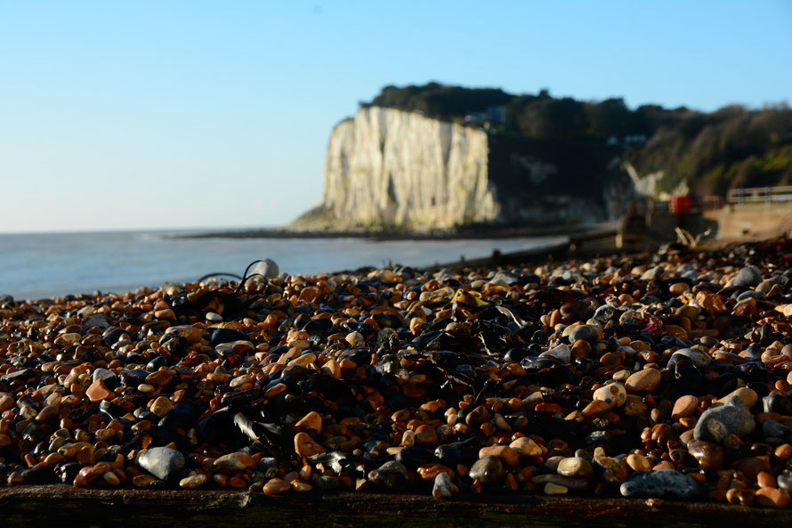 Shingle bank and early light, St Margaret's Bay 28 November 2015.