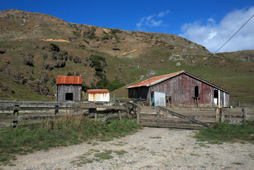 Farm buildings on the Cowin Road south of Mangakarau