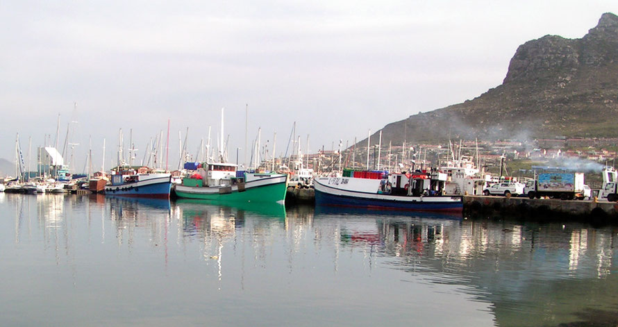 Boats in Hout Bay harbour, 2006 (Courtesy  Piesangboer @ Wikimedia)