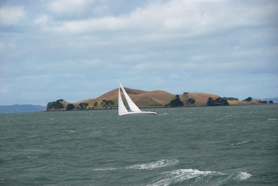 Late in the afternoon the day after Cyclone Lusi a yacht against Brown's Island (Motukorea) in the Inner Hauraki Gulf.