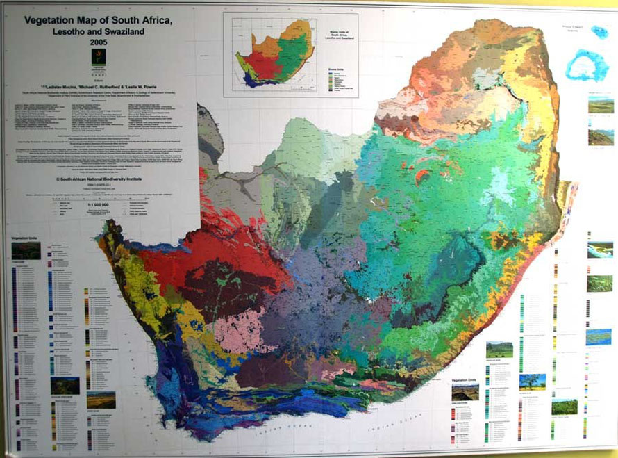 The beautiful map of South Africa's vegetation displayed outside the toilets at Kirstenbosch Botanical Gardens