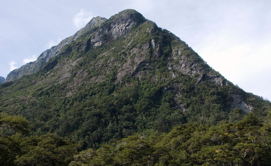 The top of Barren Peak (1,561m) that towers above the boat terminus at Milford Sound.