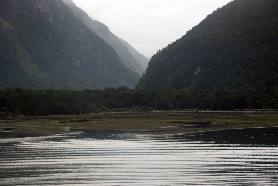 The alluvial fan in Harrison Cove. Rates of erosion at Milford Sound are eextremely slow compared to other fiord regions of the world. Hard rock, thick vegetation, small catchments and sediment filter
