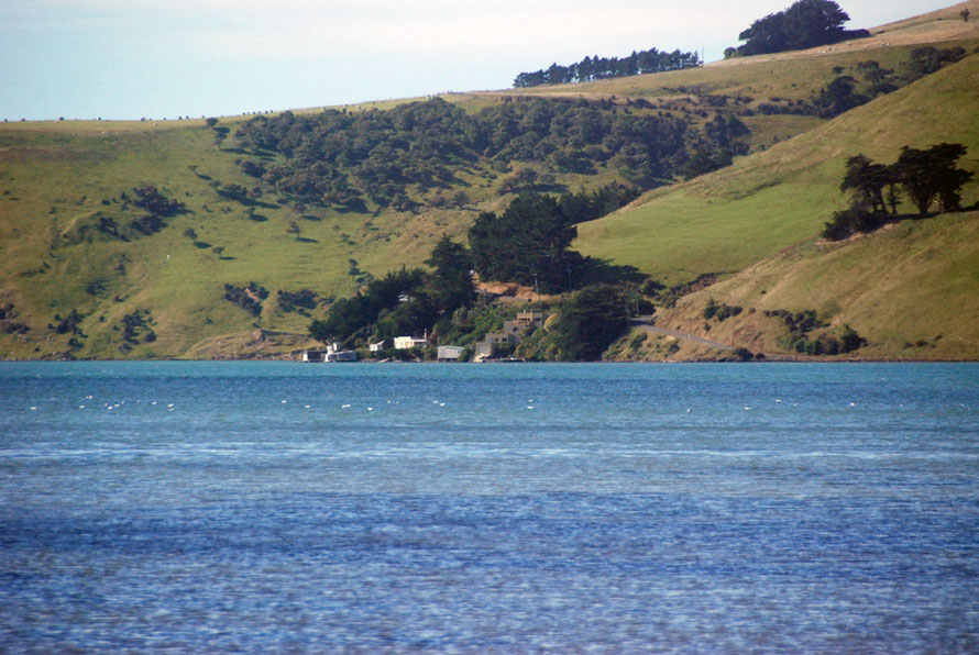Looking down Papanui Inlet towards the sea and the cluster of bachs on the shore