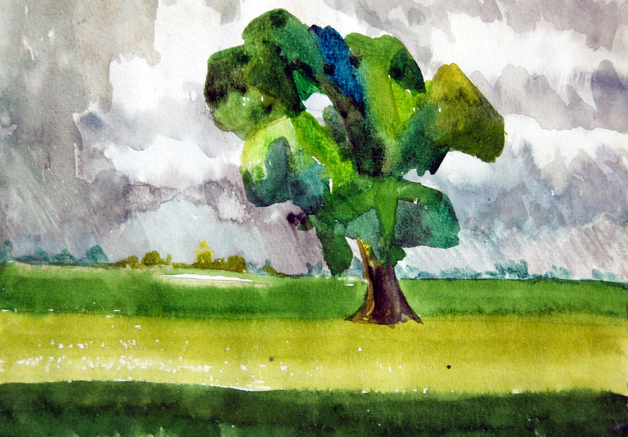 Port Meadow Poplar Studies, Oxford  (1980) (Watercolour and Pencil) Fergus Murray