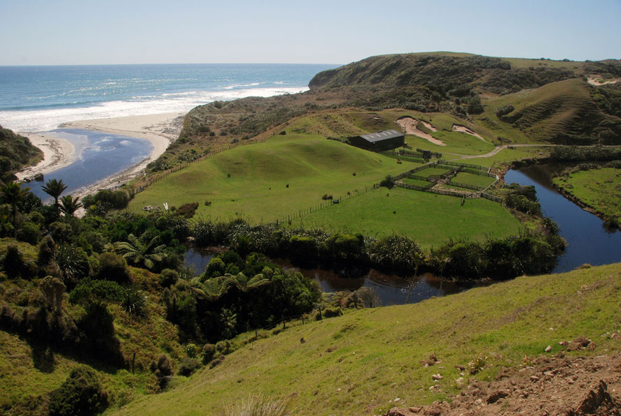 The Otuhie river reaches the Tasman Sea, skirting sheep paddocks of unnatural green
