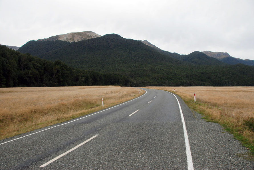 The fast sweeping bends of the Milford Road in the Eglinton Valley: it is the third most dangerous stretch of road in New Zealand.