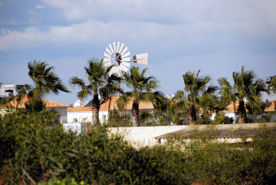 An old wind pump surrounded by villas and palm trees being battered by the north-easterly gale in Protaras
