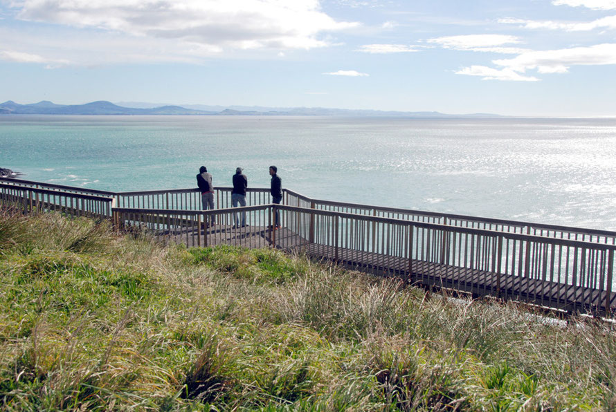 The great sweep of the Pacific east coast of the South Island from Taiaroa Head on the Otago Peninsula