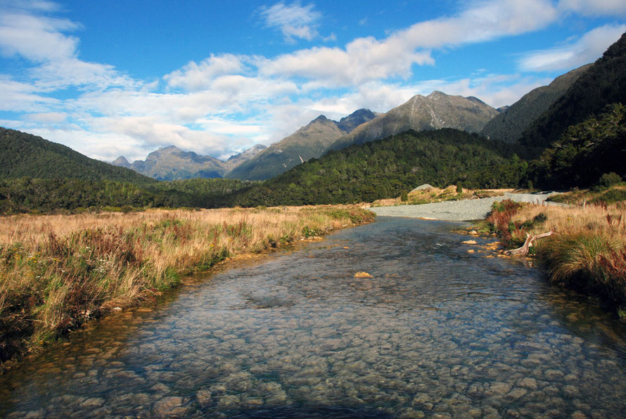 Looking south-west down the west branch of the Eglinton River near Cascade Creek on the Milford Road.