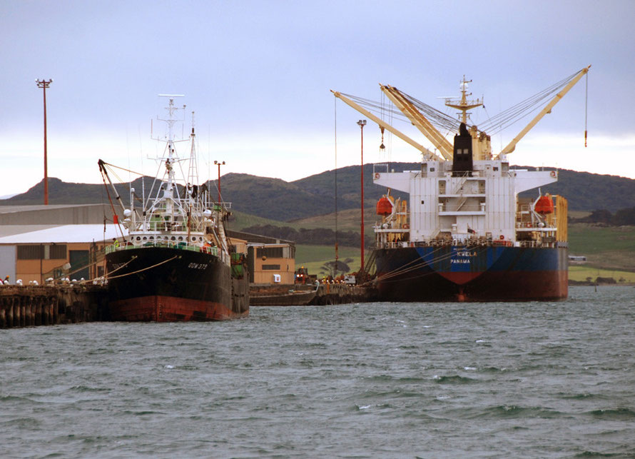 The 20,000 tonne Kwela bulk carrier loading logs at Bluff Harbour. On left the GOM 379 fishing vessel involved in the Foreign Chartered Vessels outrage in New Zealand (see below).