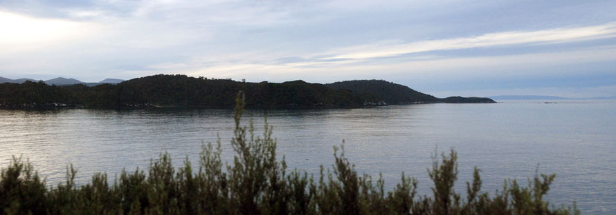 The light fades on Dead Mans Beach and Horseshoe and Mamuka Points on Stewart Islands as the Sooty Shearwaters fail to show