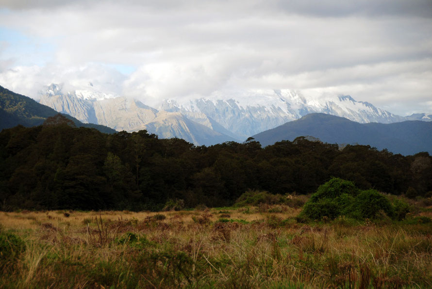 On to the Haast valley floor and glimpses of Shattered Peak and Mt McFarlane (possibly).