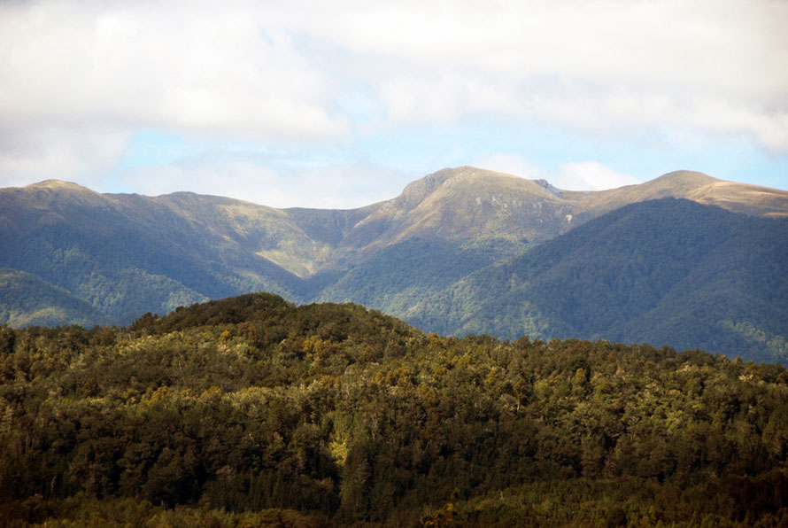 Tough terrain: Paparoa Range (1485m) from Inangahua Junction