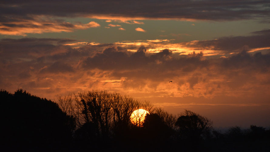 Sunrise over the South Foreland, 29th January 2015.