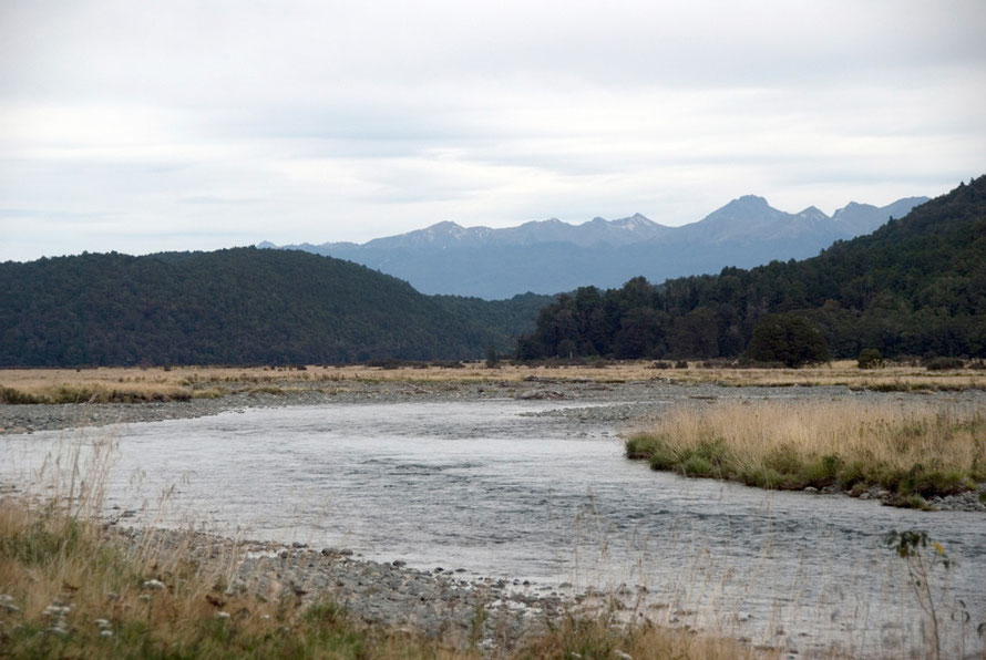 The Eglinton River flowing south  to join Te Anau, The Milford Road.
