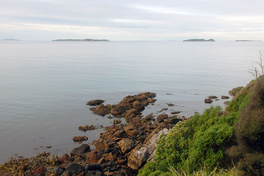 View from Fishmans Point, Stewart Island  to the Muttonbird/Titi Islands - Motuni, Pukeokaoka, Te Marama and Bunker Islets